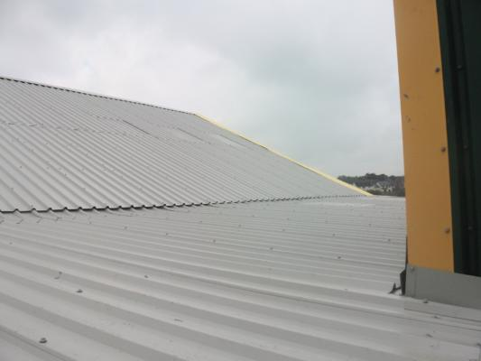 Sheeting - Strip and Re-sheet